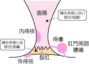 jion1.jpg
